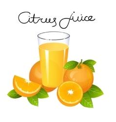 Orange juice with fruit slice composition vector