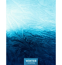 Winter Window vector image vector image