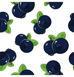 Seamless pattern of blueberries vector