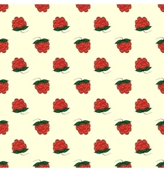 Berry raspberry seamless pattern nature background vector