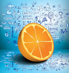 Orange business and healthy infographics vector image