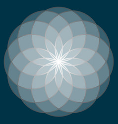 flower of life sacred geometry vector image
