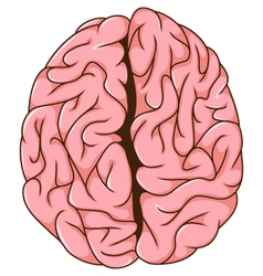Human left and right brain cartoon vector