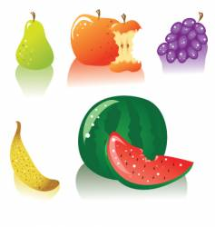fruits vector image