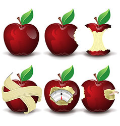 Red apples collection vector image