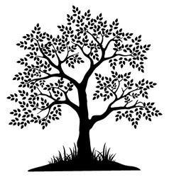 Black tree silhouette for your design vector