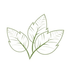 Leaves plant green ecology icon graphic vector