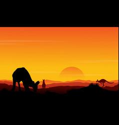 Silhouette kangaroo at sunset scenery vector