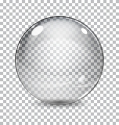 Transparent glass sphere vector