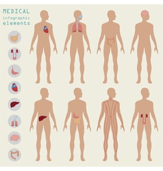 Medical and healthcare infographic elements for vector