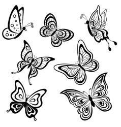butterflies contours vector image