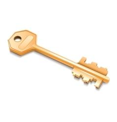 Golden key isolated on white background vector image