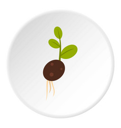 Sprout potatoes icon circle vector