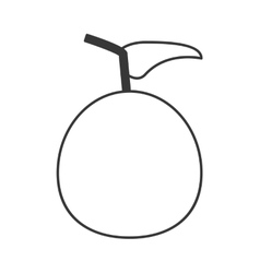 Whole tomato icon vector