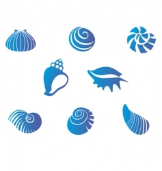 set of seashells vector image