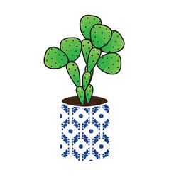 cactus homeplant in a pot vector image vector image