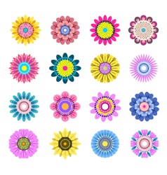 Set of beautiful colorful flowers vector