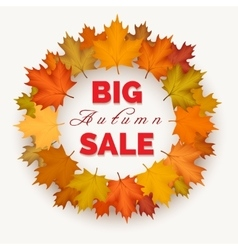 Big autumn sale wreath label vector image vector image