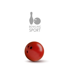 Bowling bowl isolated on the white as design vector image vector image