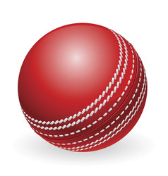 Shiny red traditional cricket ball vector
