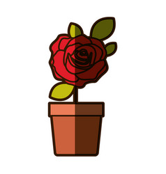 Colorful shading drawing flowered red rose with vector