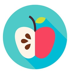 Apple Fruit Circle Icon vector image vector image