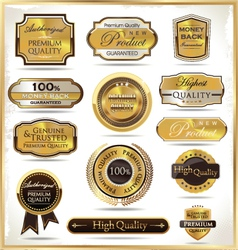 Luxury golden labels vector