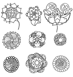 monochrome doodle flowers and leafs vector image vector image