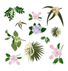 Set of wild flowers vector image