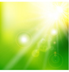 Spring summer sunlight flare abstract green color vector