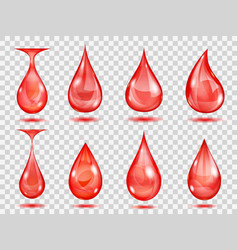 transparent red drops vector image vector image