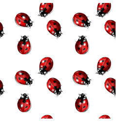 Seamless graphic with ladybugs vector