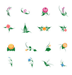 floral pattern decor element set ornamental vector image