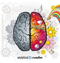 Left analytical and right creativity brain vector