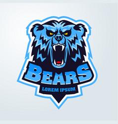bear head logo mascot emblem vector image