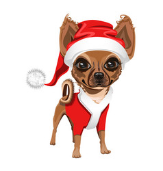 little dog in a red santa claus hat vector image vector image