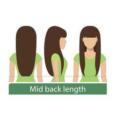 Mid back length hair vector