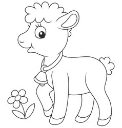 small curly lamb vector image