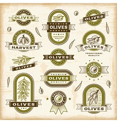 Vintage olive labels set vector image vector image