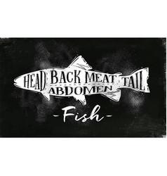 Fish cutting scheme chalk vector