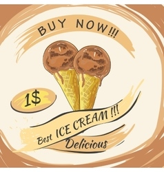 Chocolate ice cream with price popsicle on a vector