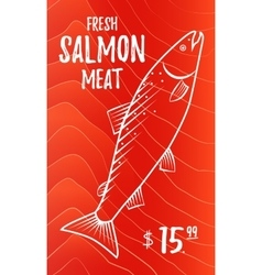 Fresh salmon meat vector