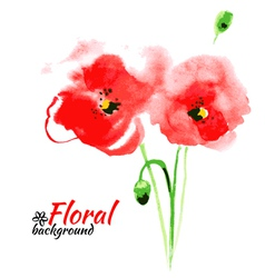Beautiful watercolor paint red poppy vector