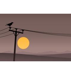Bird on Telephone Lines vector image
