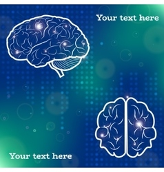 Human brain projections vector