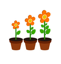 Plant growth stages symbol flat isometric icon or vector