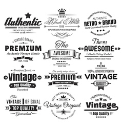 Twelve vintage insignias or labels vector