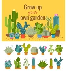 Home cactus garden poster vector