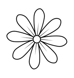 Monochrome contour of daisy flower icon floral vector