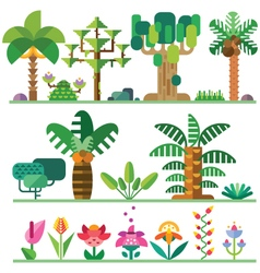 Tropical plants vector image vector image